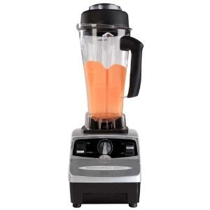 raw food blender